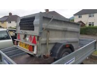 Small livestock/dog trailer