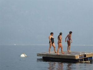 Swim / Play Dock