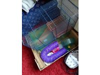 Small animal cage with accessories!