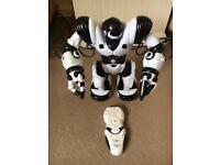 Robosapian dancing robot