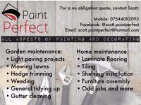Paint Perfect Maintenance