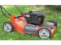 Garden Services and Maintenance in the Belfast , Lisburn and Dromore Areas
