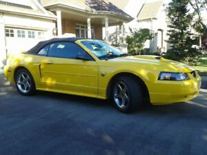 2004 Mustang! 40th Anniversary Edition! Mint!