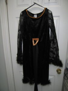 Kid's / Girl's Witch Halloween Costume (Large, Ages 9 to 10)