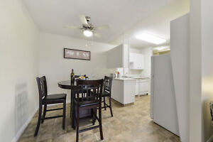 Great 1 bedroom apartments available now! Edmonton Edmonton Area image 3