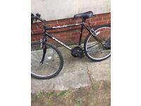 cheap bike
