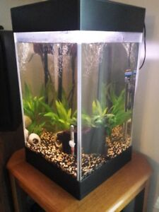 Aqueon Aquarium + LOTS of extras
