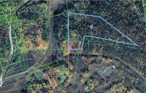 24.8 treed acres 5 min from Larder Lake