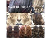 SELF EMPLOYED HAIR STYLIST
