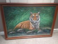 Tiger framed oil painting by Mc Donald