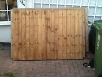 6x4 feather edge fencing 33ft. (Reduced)