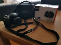 Sony DSCH300 Digital Camera