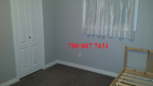 One Bedroom for Rent Close to West Edmonton Mall
