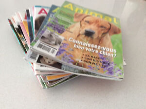 MAGASINES CHIENS & CHATS