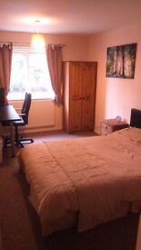 All bills included large double room,off rod parking de22 3wl derby £300 pcm