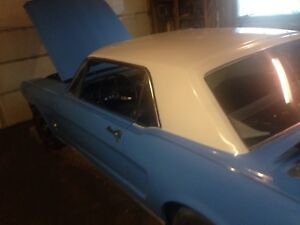 1965 mustang  pony edition for sale
