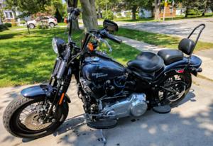 2009 Harley-Davidson Crossbones FLSTSB