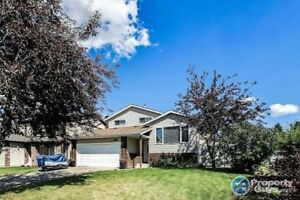 Newly updated 4 bed/2.5 bath, close to amenities