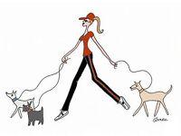 Dogs'r'us Dog Walking
