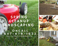 Grass Cut, Hedging, Weed Removal, Cleanups, Tree Care, Sealing
