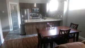 New Fully Furnished Legal Basement Suite Stonecreek