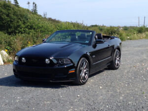 2014 Ford Mustang GT PREMIUM 5.0.. Convertible..BLACK ON BLACK