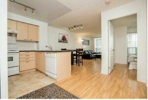 1 bedroom for Rent !! $1550