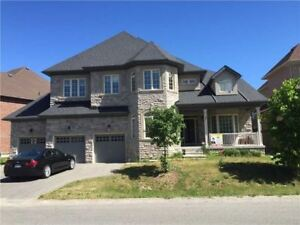 Over 4000Sf 5 Bedroom 4 Car Garage Gorgeous House
