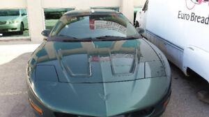 1996 Pontiac Firebird Coupe (2 door)