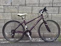 Pendleton Brooke ladies hybrid bicycle