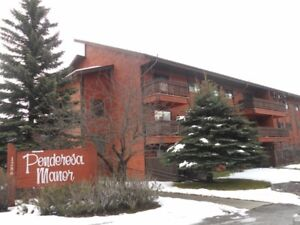 1 Bedroom Furnished Condo For Rent in Sparwood!