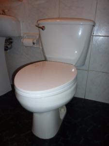 Toilette à donner