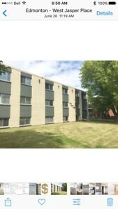 Newly Renovated. West Jasper Place. 1 bedroom