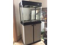100 L fish tank and stand with filter and lights *MAKE AN OFFER*