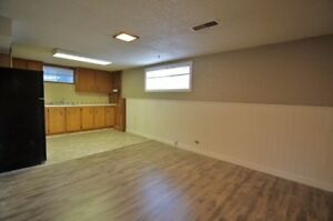Large newly renovated 1 bdr suite - Highland Park