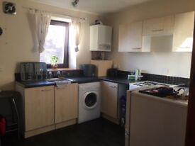 Tidy 1 bed flat for rent- Buckhaven