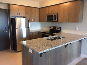 Brand New 2 Bedroom Downtown Guelph Metalworks Condo