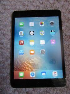 iPad mini with 16 gig storage