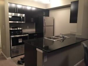 St. Albert Furnished Brand New Penthouse 2 Bedroom Condo