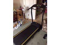 Everlast Motorized Treadmill
