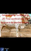 Sacrifice (Qurbani) online (in the way of Allah).