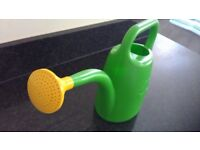 Cute Green Watering Can for sale