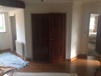 4 x Victorian Style Mahogany Veneer Doors