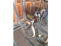 Woman bicycle and lock