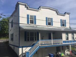 157 500$ - Quadruplex à vendre à St-Joseph-De-Beauce