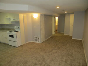 Newly Renovated 2 Bedroom Basement Suite in SE Hill