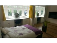 A NEWLY REFURBISHED ROOM, GOOD SIZE, FURNISHED, LAND SCOPE VIEWING,
