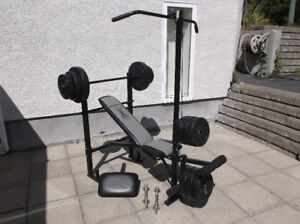 DUMBELL BANC D'EXERCICE AUTO CAMION OUTIL VTT VR TRAILER