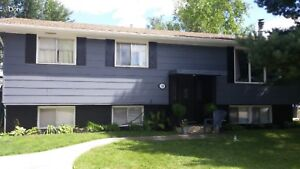 NEW PRICE - FOREST GROVE