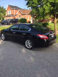 2010 Nissan Maxima-GREAT DEAL $6000 firm